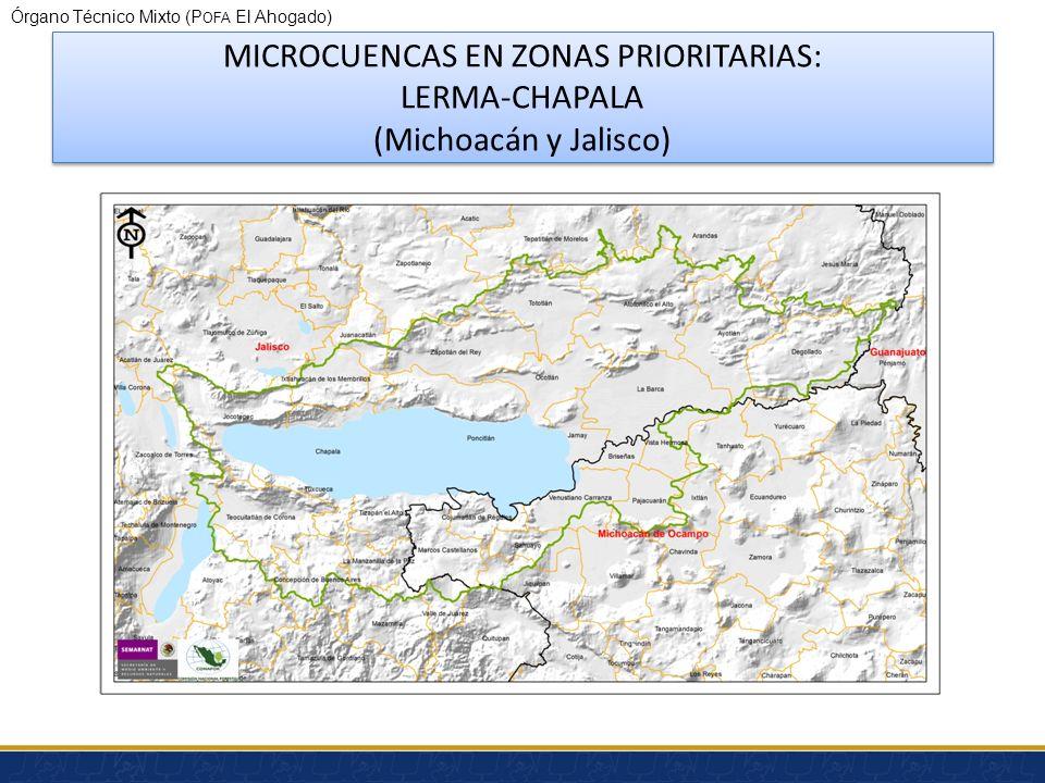 MICROCUENCAS EN ZONAS PRIORITARIAS: LERMA-CHAPALA (Michoacán y Jalisco)