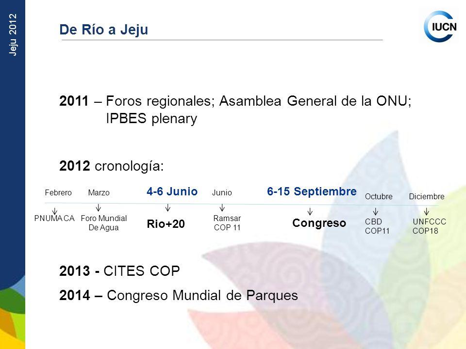 2011 – Foros regionales; Asamblea General de la ONU; IPBES plenary