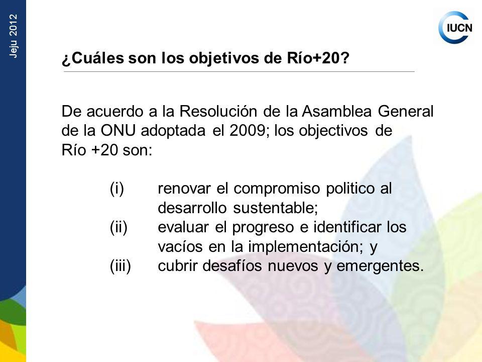¿Cuáles son los objetivos de Río+20