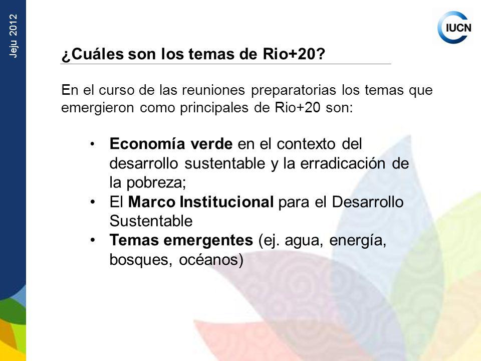 ¿Cuáles son los temas de Rio+20