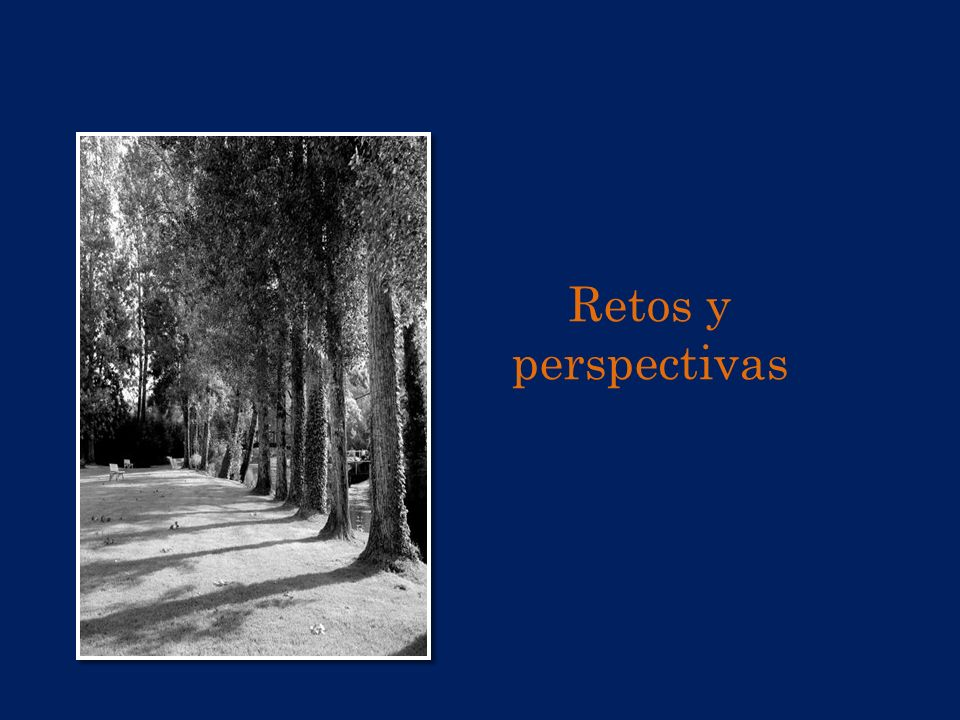 Retos y perspectivas