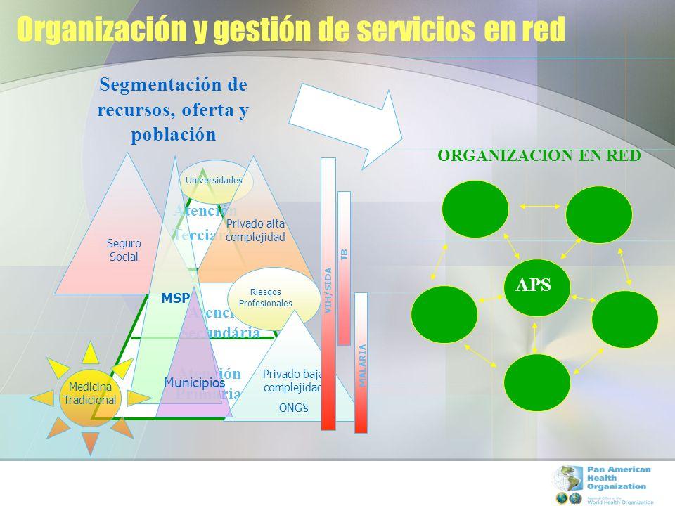 Organización y gestión de servicios en red