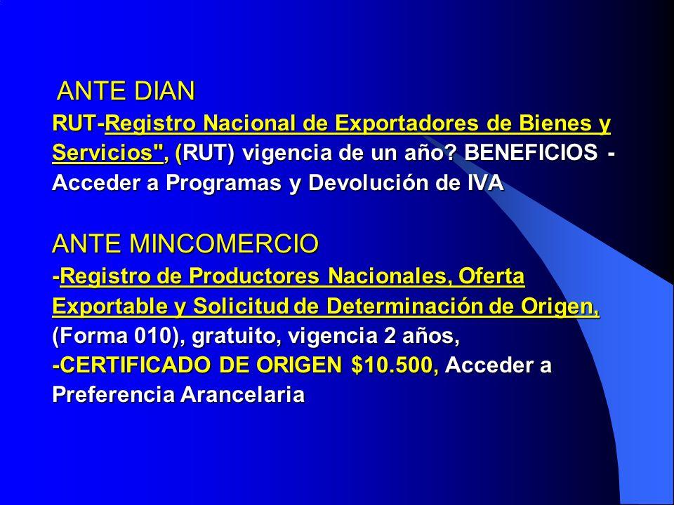 ANTE DIAN RUT-Registro Nacional de Exportadores de Bienes y Servicios , (RUT) vigencia de un año.