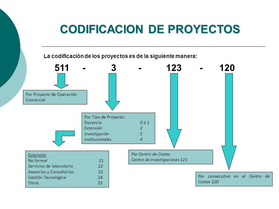 CODIFICACION DE PROYECTOS