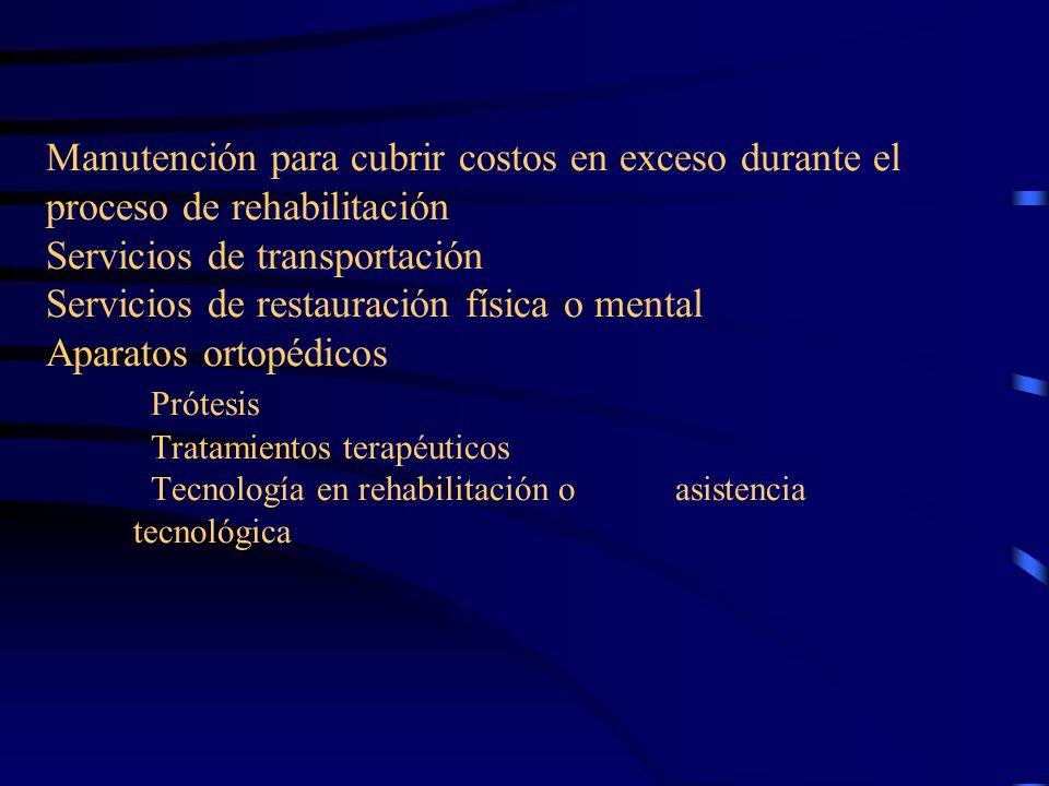 Manutención para cubrir costos en exceso durante el proceso de rehabilitación Servicios de transportación Servicios de restauración física o mental Aparatos ortopédicos Prótesis Tratamientos terapéuticos Tecnología en rehabilitación o asistencia tecnológica