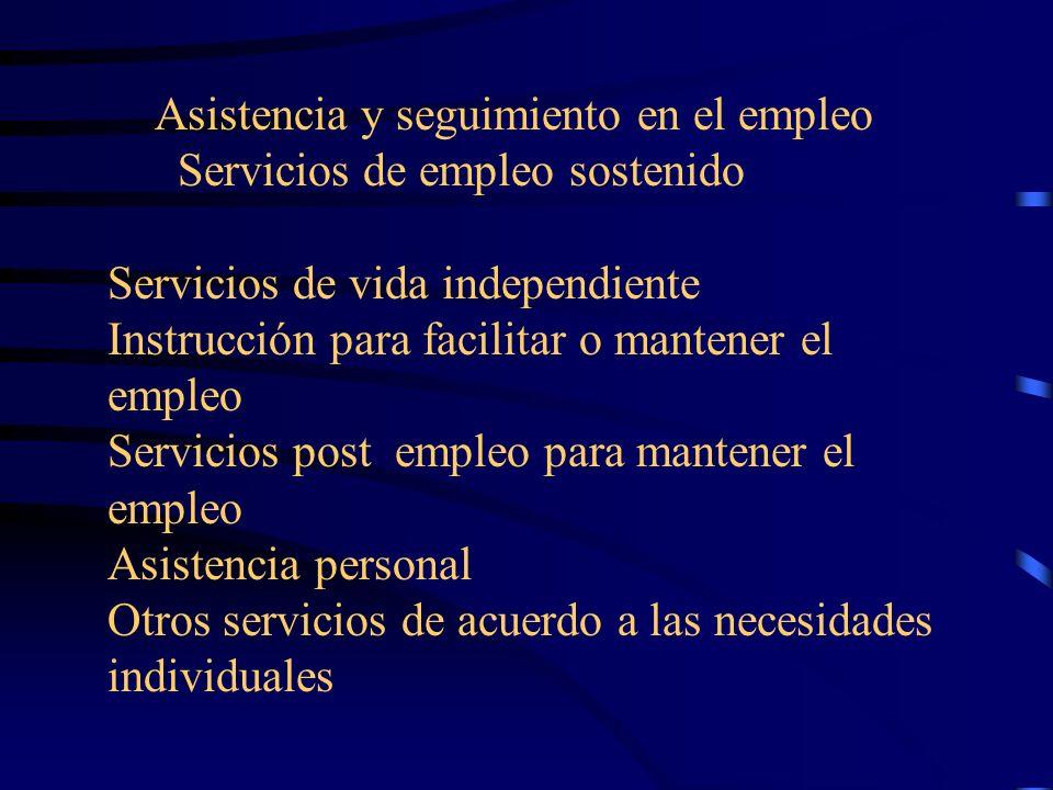 Asistencia y seguimiento en el empleo Servicios de empleo sostenido Servicios de vida independiente Instrucción para facilitar o mantener el empleo Servicios post empleo para mantener el empleo Asistencia personal Otros servicios de acuerdo a las necesidades individuales