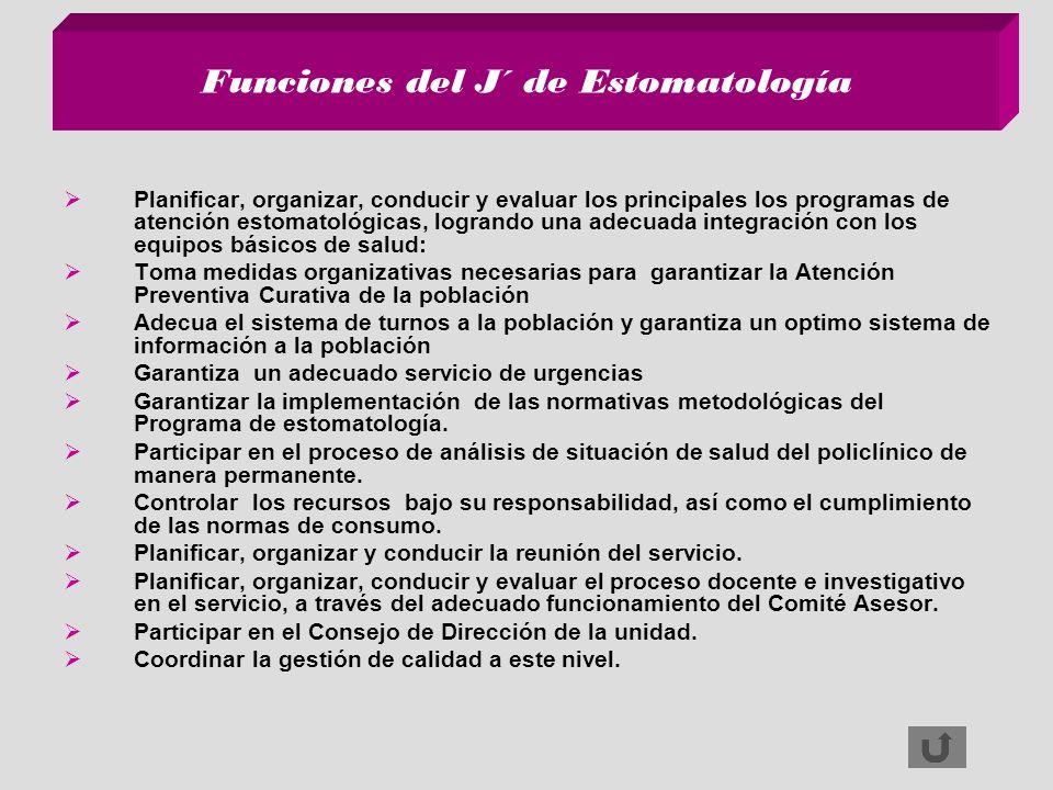 Funciones del J´ de Estomatología