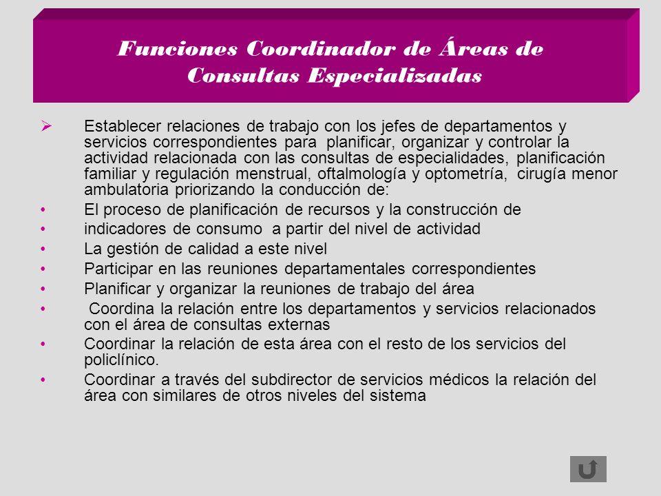 Funciones Coordinador de Áreas de Consultas Especializadas