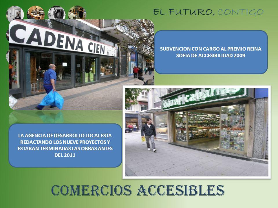 SUBVENCION CON CARGO AL PREMIO REINA SOFIA DE ACCESIBILIDAD 2009