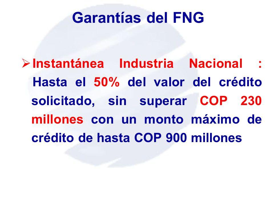 Garantías del FNG