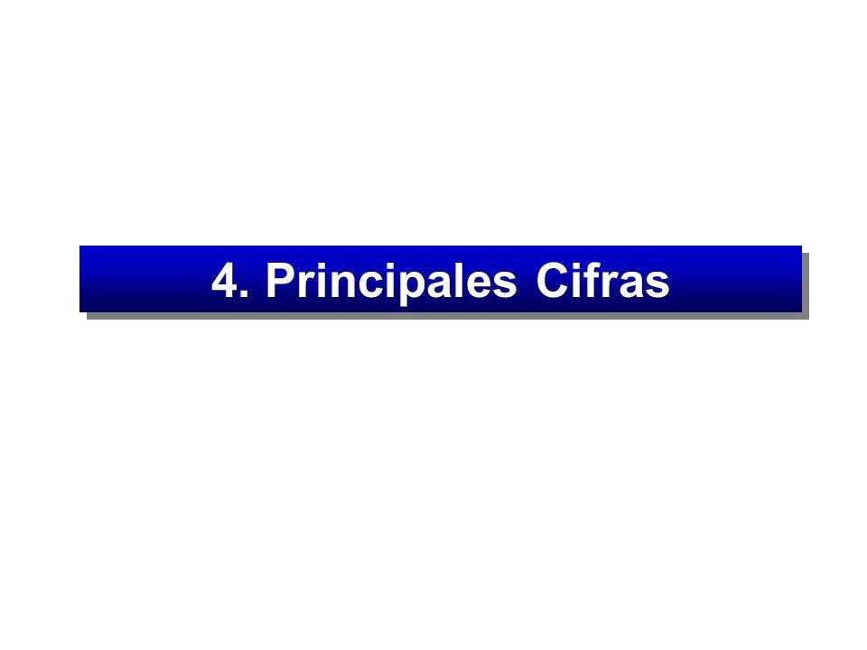 4. Principales Cifras