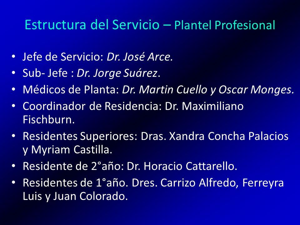 Estructura del Servicio – Plantel Profesional