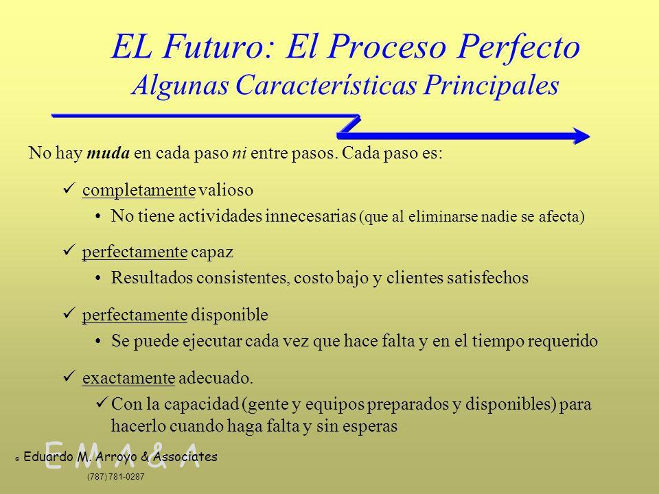 EL Futuro: El Proceso Perfecto Algunas Características Principales