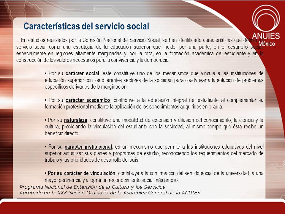 Características del servicio social