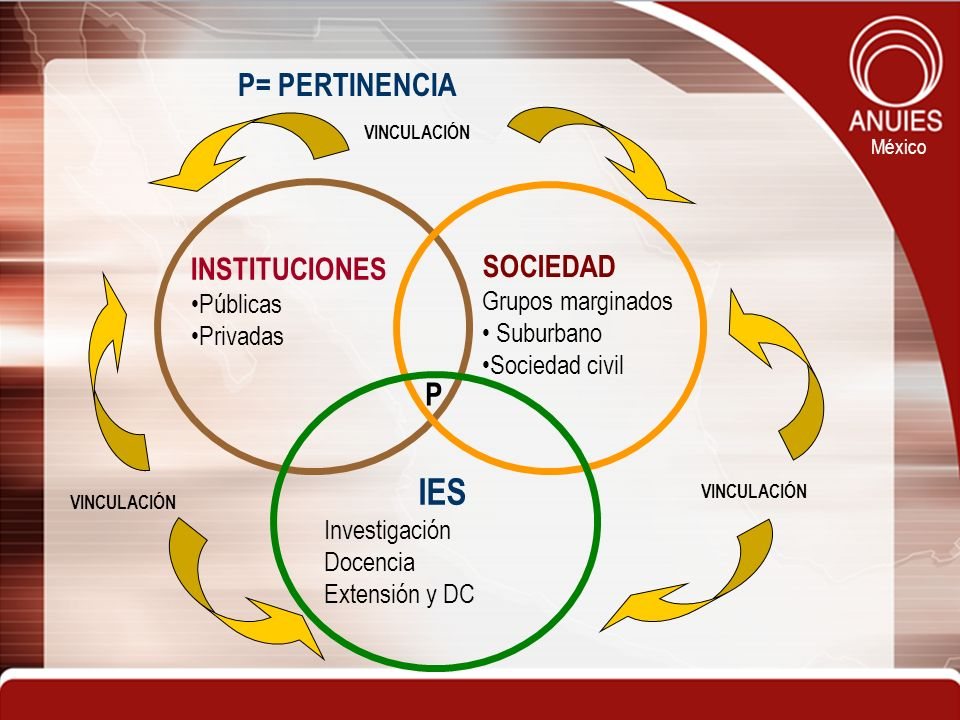 IES P= PERTINENCIA P INSTITUCIONES SOCIEDAD Públicas Grupos marginados