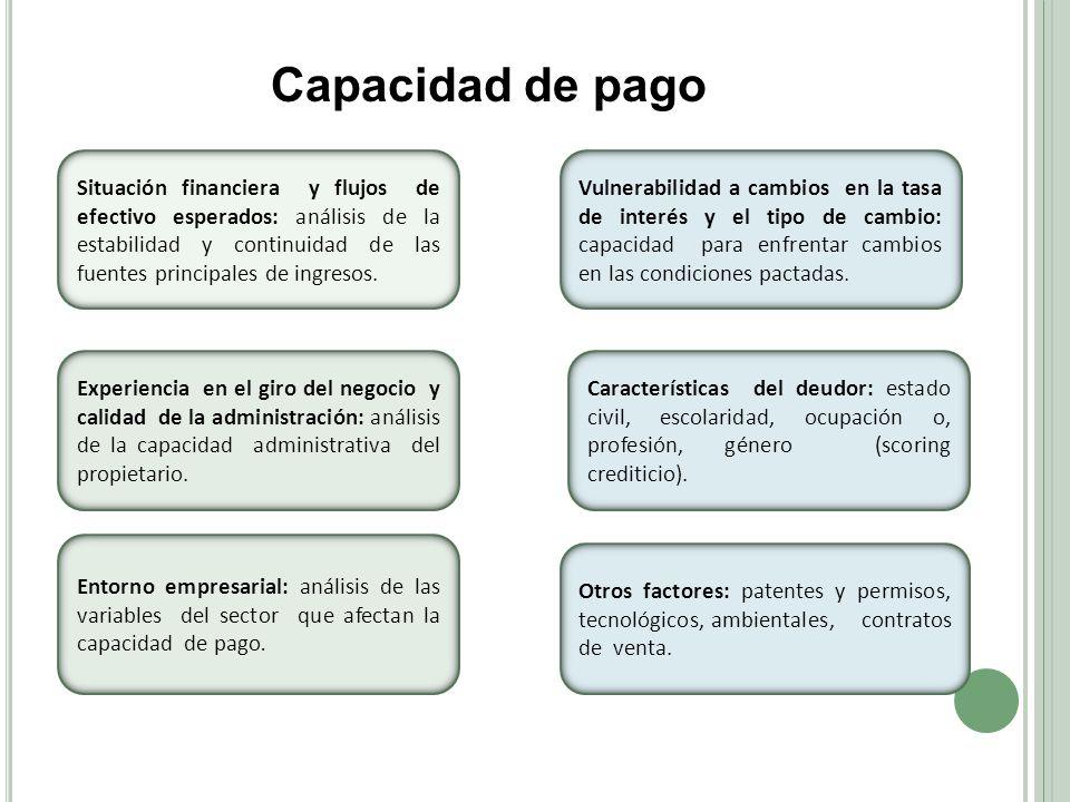 Capacidad de pago