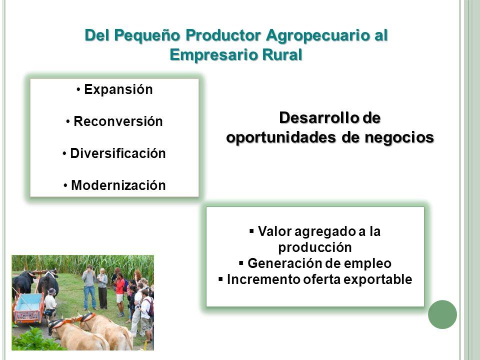 Del Pequeño Productor Agropecuario al Empresario Rural