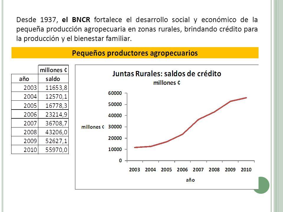 Desde 1937, el BNCR fortalece el desarrollo social y económico de la pequeña producción agropecuaria en zonas rurales, brindando crédito para la producción y el bienestar familiar.