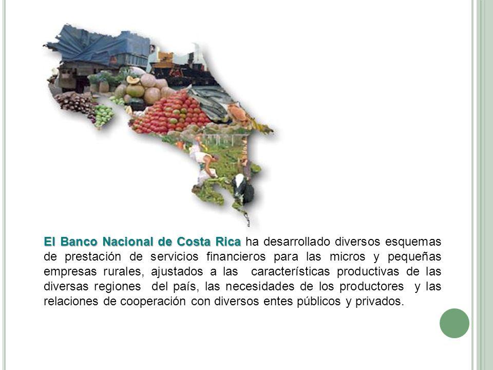 El Banco Nacional de Costa Rica ha desarrollado diversos esquemas de prestación de servicios financieros para las micros y pequeñas empresas rurales, ajustados a las características productivas de las diversas regiones del país, las necesidades de los productores y las relaciones de cooperación con diversos entes públicos y privados.