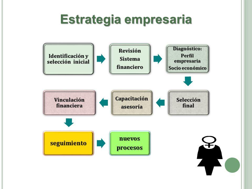 Estrategia empresaria