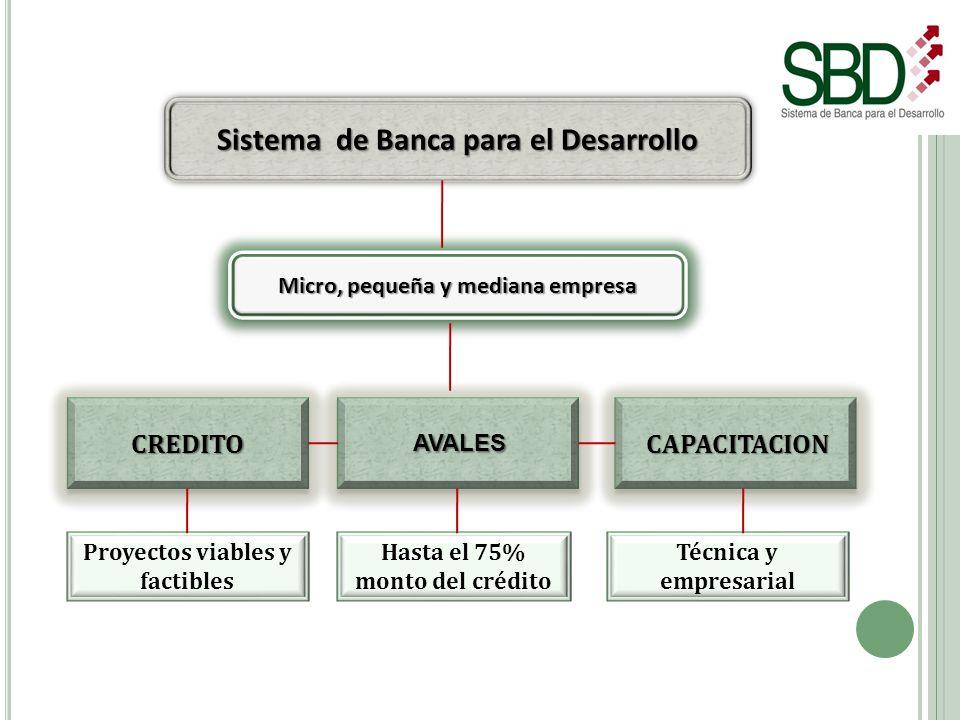 Sistema de Banca para el Desarrollo