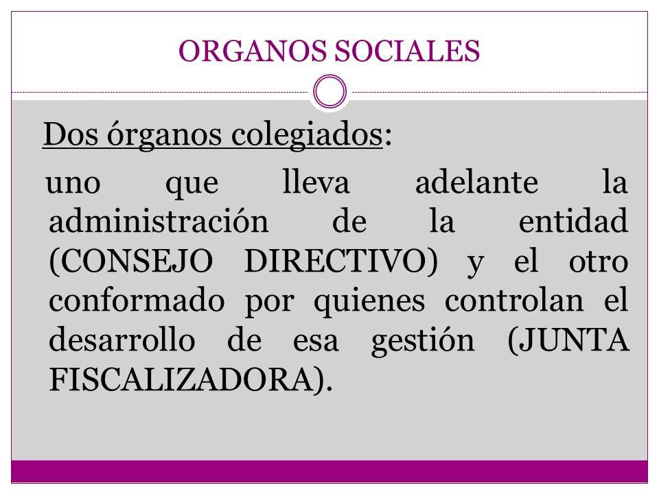 ORGANOS SOCIALES Dos órganos colegiados: