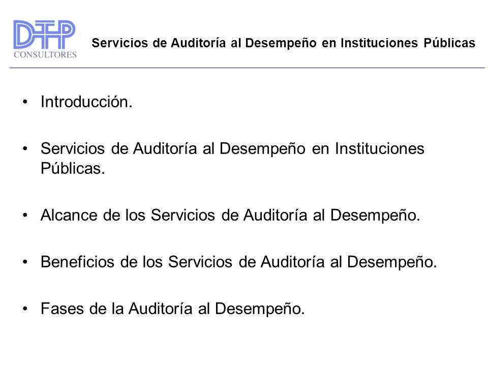 Servicios de Auditoría al Desempeño en Instituciones Públicas.