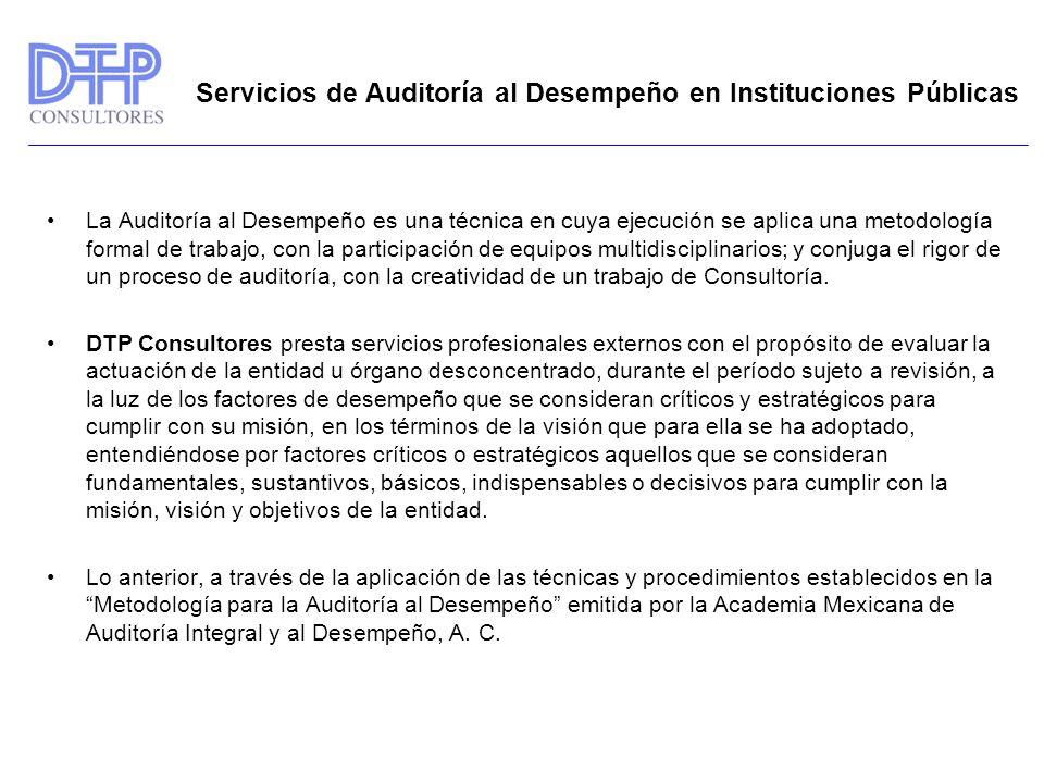 Servicios de Auditoría al Desempeño en Instituciones Públicas