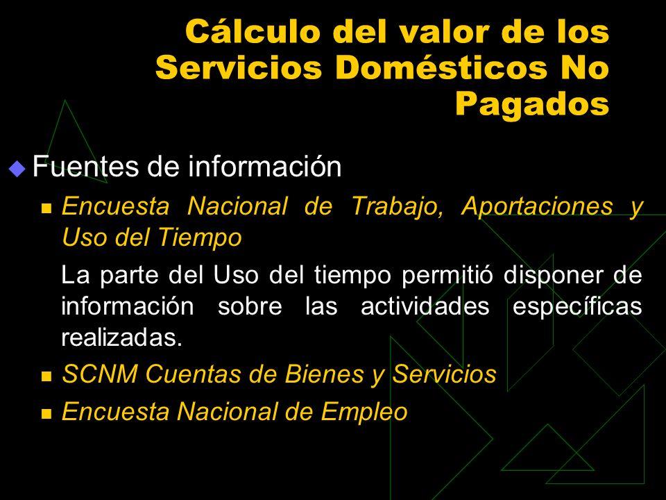 Cálculo del valor de los Servicios Domésticos No Pagados