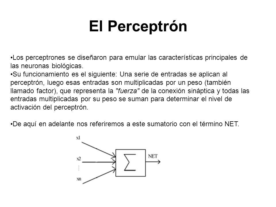 El Perceptrón Los perceptrones se diseñaron para emular las características principales de las neuronas biológicas.