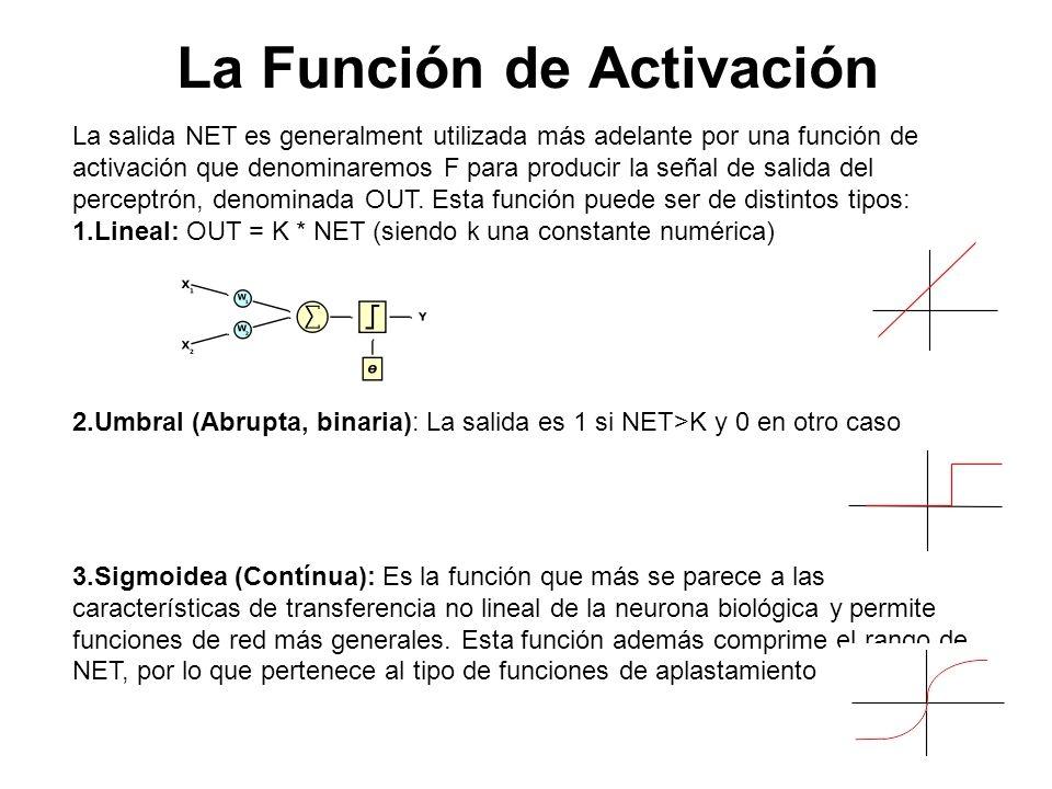 La Función de Activación