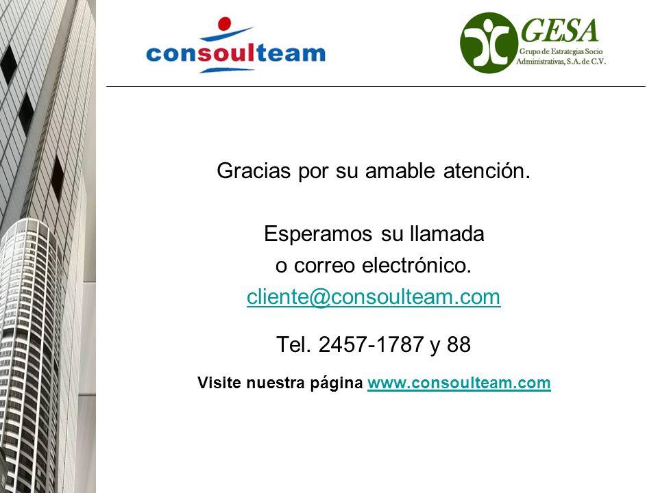 Visite nuestra página www.consoulteam.com