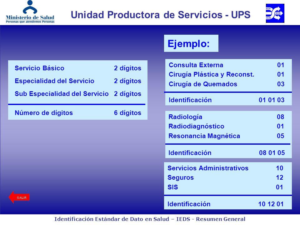 Unidad Productora de Servicios - UPS