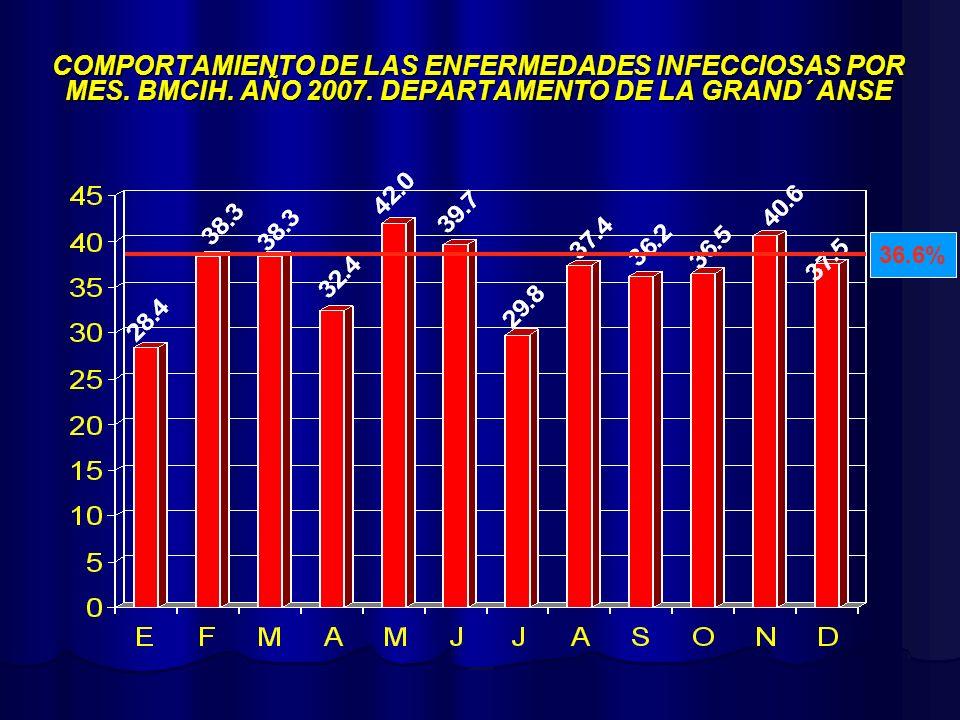 COMPORTAMIENTO DE LAS ENFERMEDADES INFECCIOSAS POR MES. BMCIH. AÑO 2007. DEPARTAMENTO DE LA GRAND´ ANSE