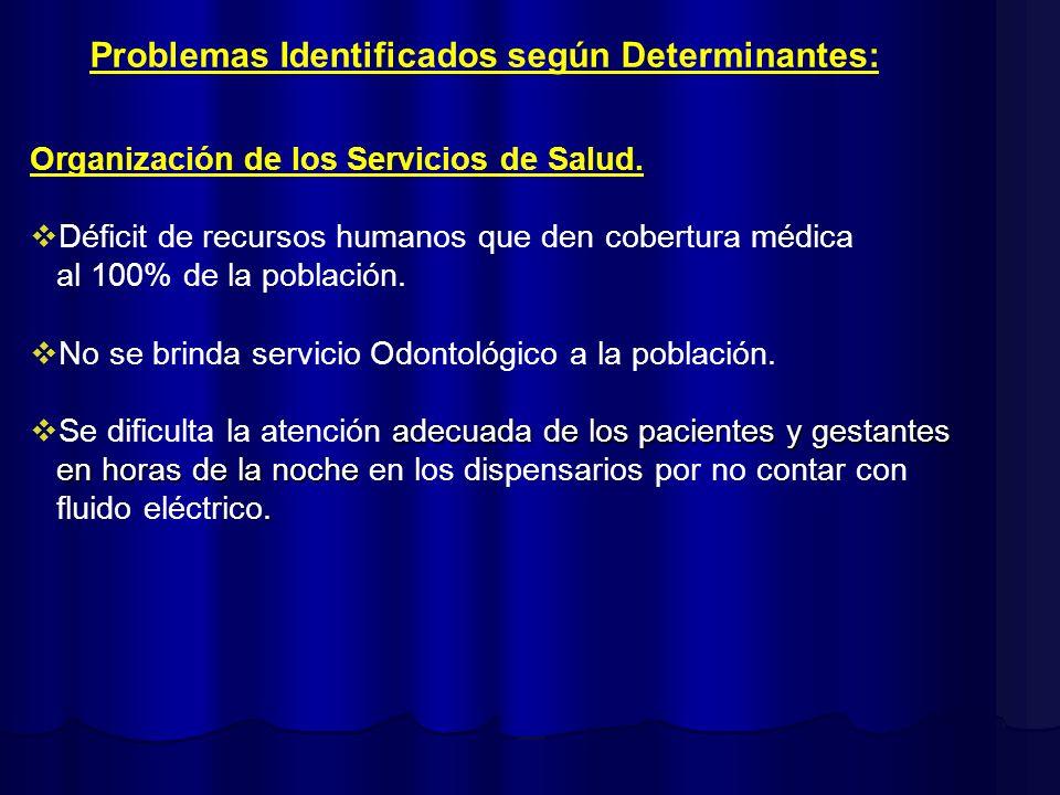 Problemas Identificados según Determinantes: