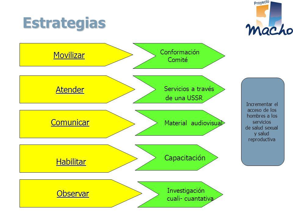 Estrategias Movilizar Atender Comunicar Habilitar Observar Comité