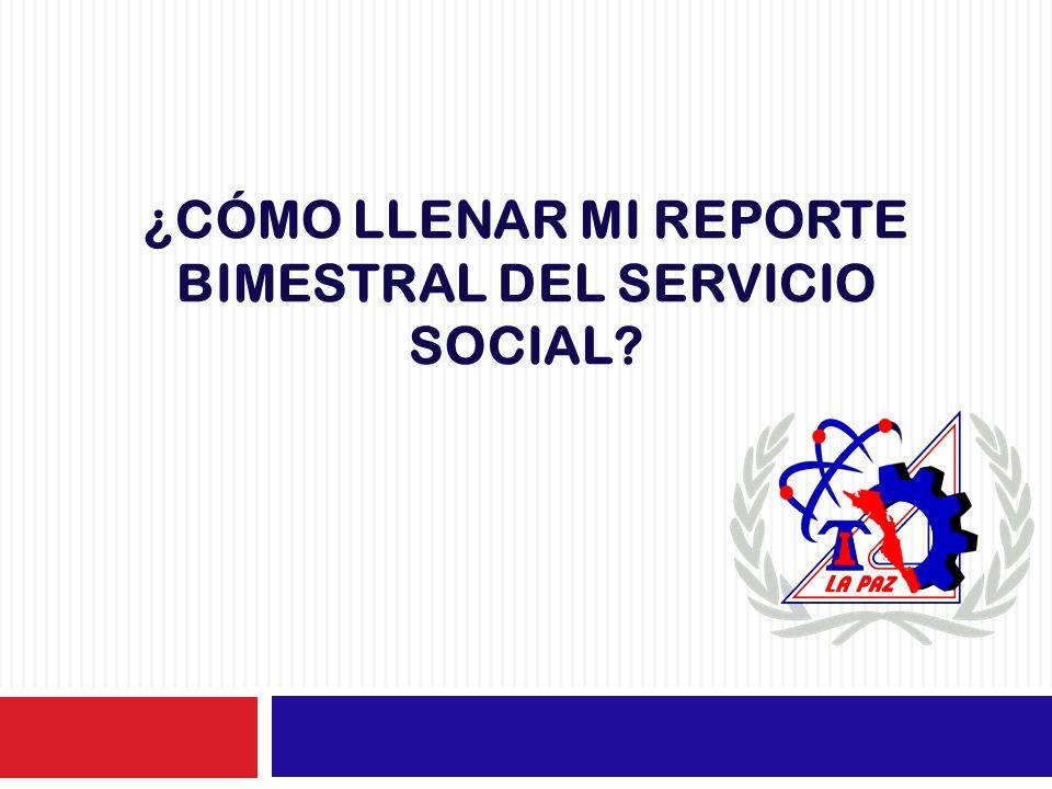 ¿Cómo llenar mi reporte bimestral del servicio social