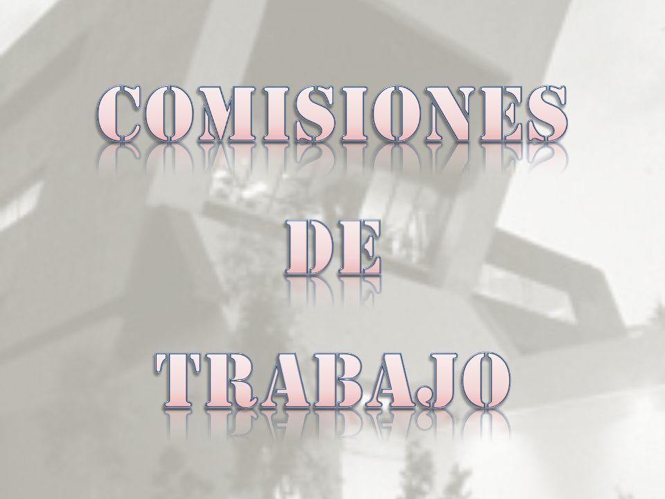 COMISIONES DE TRABAJO