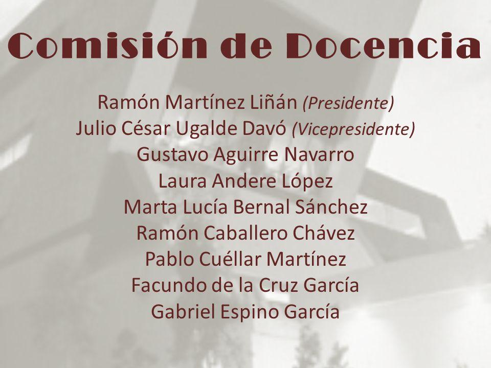 Comisión de Docencia Ramón Martínez Liñán (Presidente)