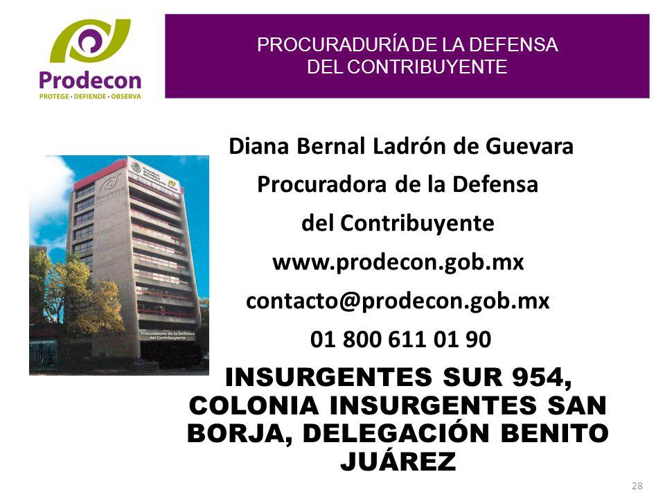 Diana Bernal Ladrón de Guevara Procuradora de la Defensa