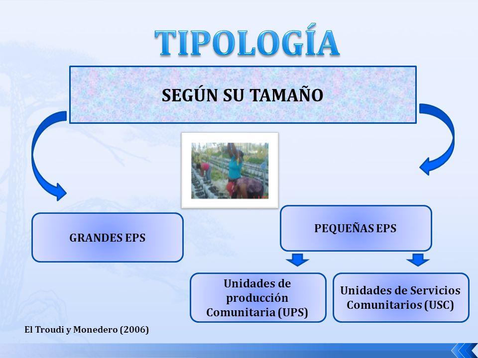 TIPOLOGÍA SEGÚN SU TAMAÑO PEQUEÑAS EPS GRANDES EPS