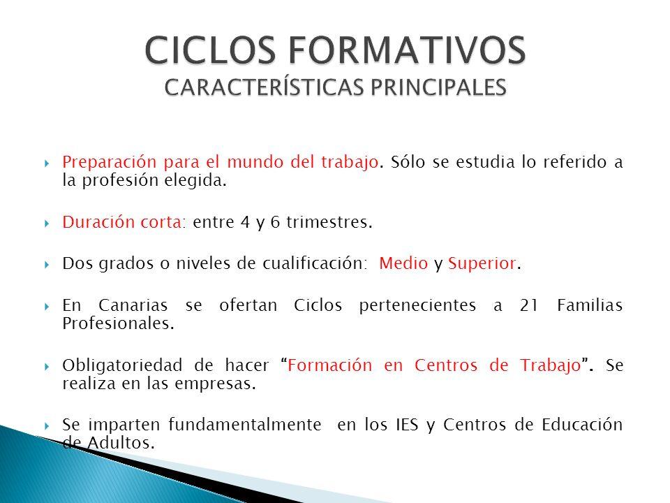 CICLOS FORMATIVOS CARACTERÍSTICAS PRINCIPALES