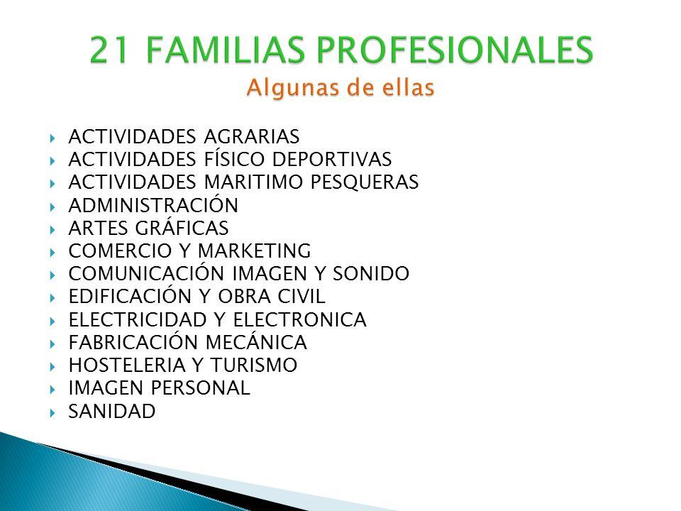 21 FAMILIAS PROFESIONALES Algunas de ellas