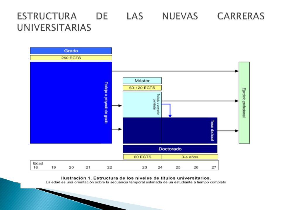 ESTRUCTURA DE LAS NUEVAS CARRERAS UNIVERSITARIAS