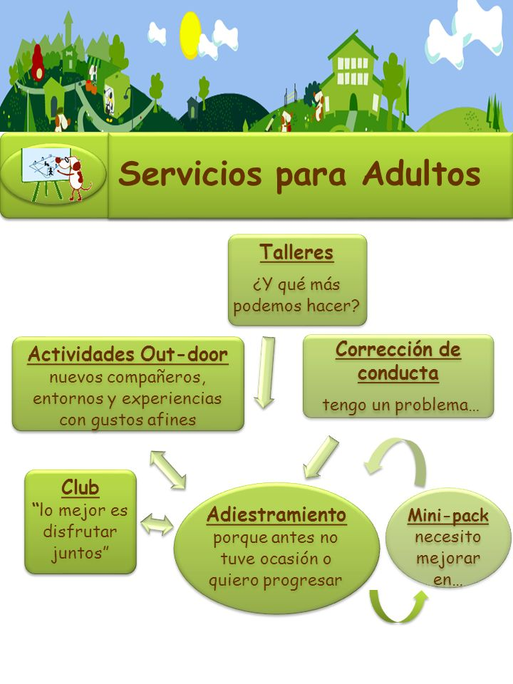 Servicios para Adultos