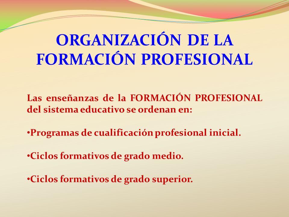 Organización de la formación profesional