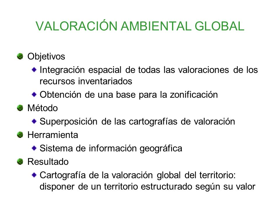VALORACIÓN AMBIENTAL GLOBAL