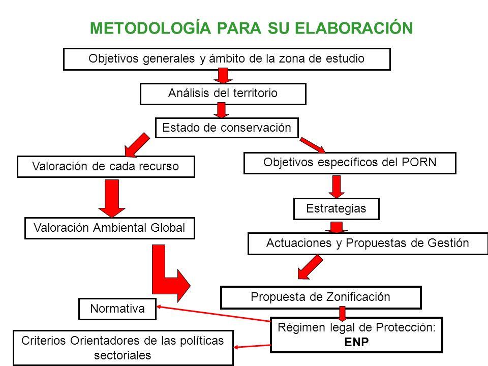 METODOLOGÍA PARA SU ELABORACIÓN