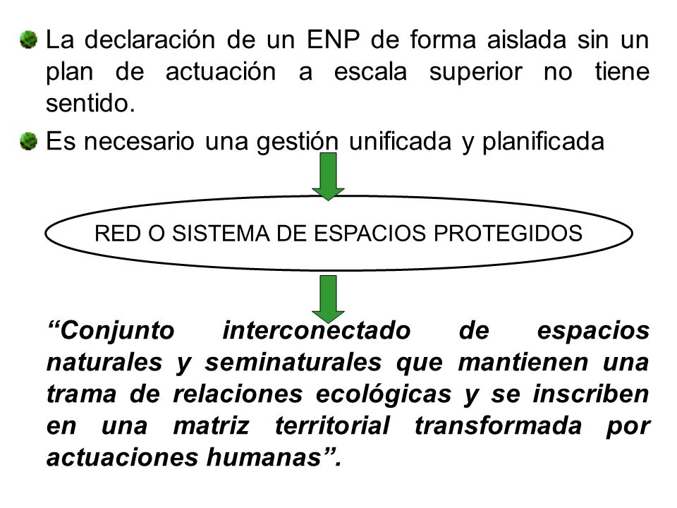 RED O SISTEMA DE ESPACIOS PROTEGIDOS