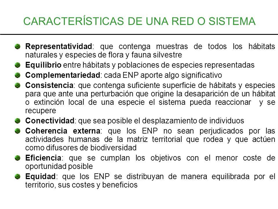 CARACTERÍSTICAS DE UNA RED O SISTEMA